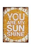 Blechschild Sunshine Shabby Antik Nostalgie Rost- gelb