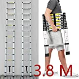 8m (12.5ft) Aluminium-telescopic mit Leiter