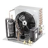 Gowe Kältetechnik Brennwertgeräte für Kühlung Einheit für Eis Kühlschrank Tiefkühlschrank Commercial Mini Gefrierschrank