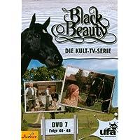 Black Beauty, Teil 07