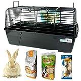 DZL- Jaula para Conejos/cobayas Cierre de Seguridad Jaula casa para Animales pequeños Jaula Conejos con Comida/Heno/Bebedero/