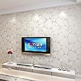 Reyqing Non-Woven Stoff, 3D Dreidimensionale Schlafzimmer, Wohnzimmer, Tv-Hintergrund, Wand, Tapete, Hochwertige Silberne Sprengschale,