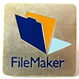File Maker Pin 20 x 20 mm