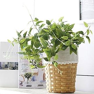 GSYLOL 5 Braches Flor Planta Artificial Hojas de Seda de Acacia Verde Mimbre Diy Wedding Home Hotel Office Decoration