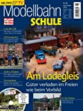 MEB Modellbahn Schule Nr. 26 - Am Ladegleis - ModellEisenBahner - Mit DVD Modellbahn TV 18 Bild