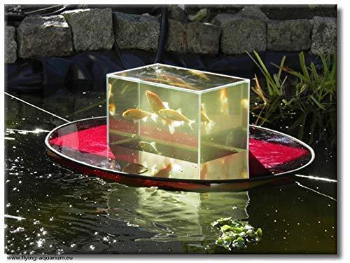 """Flying-Aquarium-Oval©\""""Hover\"""" 2500 rot Beobachtungsbecken für Teichfische Teichbedarf Gartenteich Koi"""