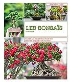 Les bonsaïs - Toutes les techniques pour bien débuter et bien s'en occuper