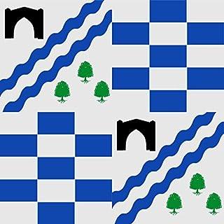 magFlags Large Flag Boveda de rio Almar | Tipo heráldico | 1.35m² | 14.5sqft | 120x120cm | 45x45inch - 100% Made in Germany - long lasting outdoor flag