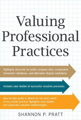 Valuing Professional Practices (English Edition)