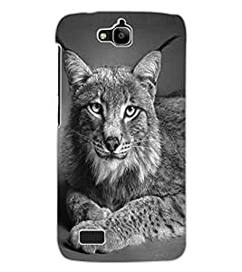 ColourCraft Big Cat Look Design Back Case Cover for HUAWEI HONOR HOLLY