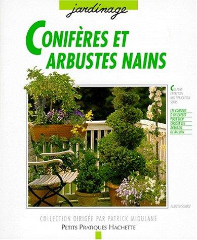 coniferes-et-arbustes-nains-pour-balcons-et-terrasses-pour-creer-un-decor-agreable-en-toute-saison-g