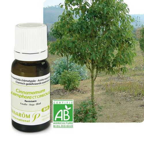 Pranarôm - Ravintsara Essential Oil - 10 ml