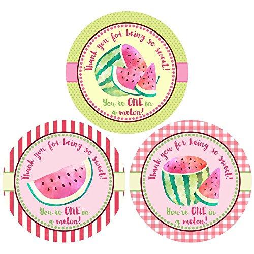 Adorebynat Party Decorations - EU Wassermelein danken Ihnen Aufkleber Aufkleber - Mädchen-Kind-Geburtstags-Babypartyangebot Dusche - Set 30 (Braut-dusche Danken Ihnen)