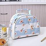 Lunch-Kühltasche, kleine isolierte Lunchbox-Taschen, tragbare und wiederverwendbare Lunch-Tasche für Frauen E 26x16x19cm