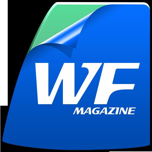 Window Film Magazine - Windows-security-film