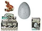 Uovo di Dinosauro Acqua