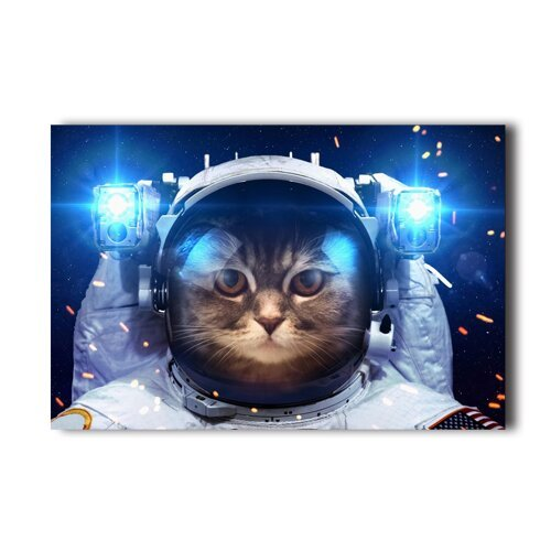 cat-in-space-funny-astrouant-design-poster-20x30-inch-wall-sticker