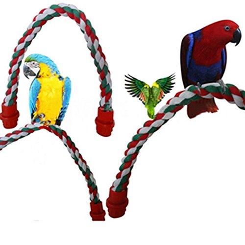 Calli Cotton Vogel Papagei stehen Rope Ladder Bar Spring Parrot Standplatz Halter Spielwaren