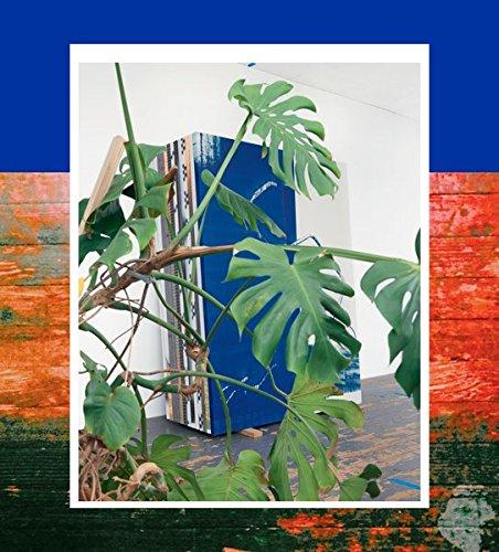 Wade Guyton. Das New Yorker Atelier: Ausst.Kat. Museum Brandhorst, Bayerische Staatsgemäldesammlungen, München 2017