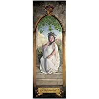 ABYstyle Abysse Corp _ Abydco447Harry Potter–Poster de Porte–The Fat Lady (53x 158)