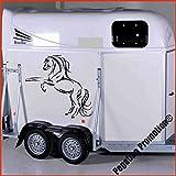 bockendes Pferd Modell 1 Aufkleber Anhänger Pferd Anhänger ca. 80x60cm