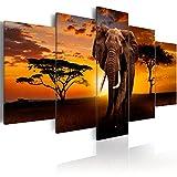 murando - Bilder 225x112 cm Vlies Leinwandbild 5 TLG Kunstdruck modern Wandbilder XXL Wanddekoration Design Wand Bild - Afrika Elefant Tier Natur Landschaft wie gemalt g-C-0025-b-m