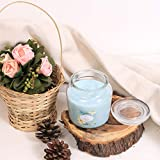 Zenlife Fragranced 13 Oz Glass Jar Candles (Ocean Breeze)