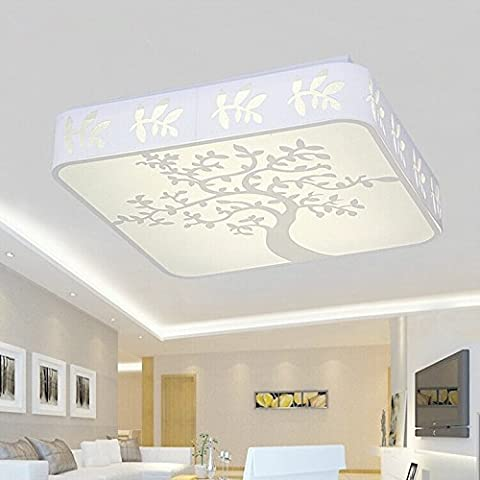 NHD-LED the living room ceiling high-grade acrylic