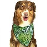 Hipiyoled Modello di Foglie di Palma dell'acquerello Elegante Sciarpa di Compleanno di Gatto Cane Cucciolo di Bandana