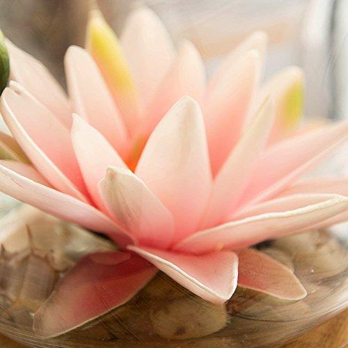 ZHUDJ Seerosen Lotus Künstliche Blumen Wohnzimmer Mit Blumen Blumen Home Decor Glas Vasen Swing Eingerichtet.