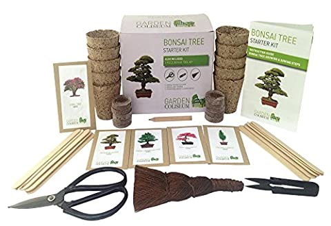 BONSAI TREE KIT GROW YOUR OWN BONSAI TREES - GARDENING GIFT SET - Includes 3 bonsai tools, 10 growing pots, 10 compost discs, 10 plant markers, 5 sachets of seed varieties & instruction