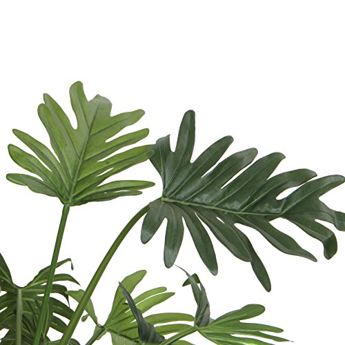 MICA Decorations 930651 Philodendron, Polyester, Gruen, 66 x 66 x 50 cm