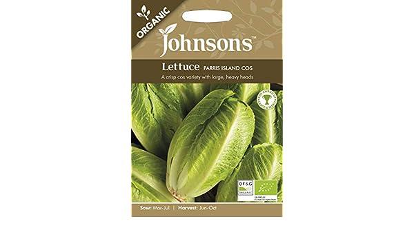 1000 graines Johnsons-Légumes-organiques laitue-Parris Island COS