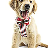 FJTHY Pet Atmungsaktive Weste Hundeleine Seil Set Geschenk Mode Warm,rot,Einheitsgröße