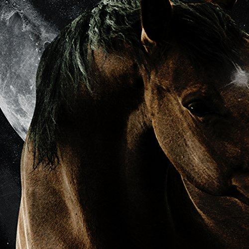 Pferd Platz Mond Tier Platz Tier Damen S-2XL Muskelshirt | Wellcoda Schwarz