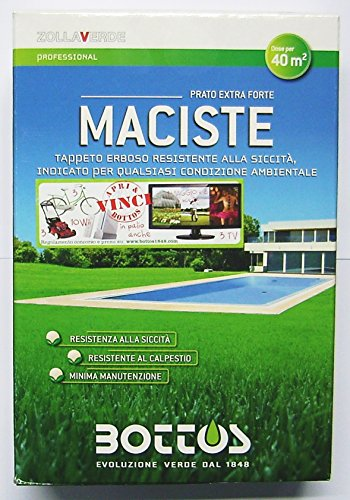 maciste-sementi-per-tappeto-erboso-ideale-per-zone-aride-1-kg