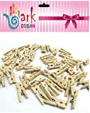100 Mini wooden pegs (Natural)