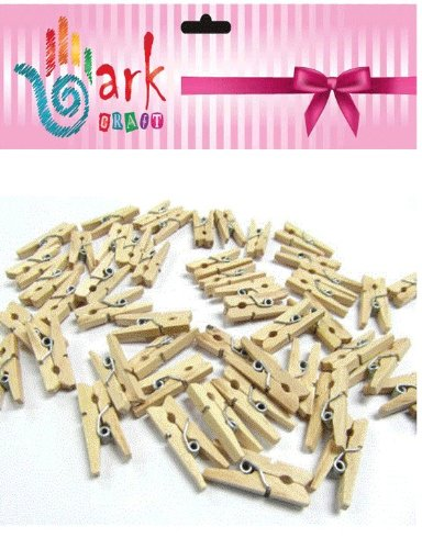100 Mini wooden pegs (Natural) By Ark Craft