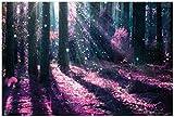 Wallario Premium XXL Vliestapete Fantasie im Wald - Pinke Blumen in der Sonne - Größe: 400 x 267 cm