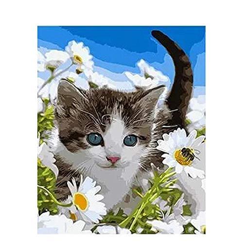 NHJKKLLL Malen Nach Zahlen DIY Ölfarbe durch Anzahl Kit Wildflower Katze, DIY Digitale Malerei Kit Erwachsene Anfänger Kinder Leinen Leinwand(Ohne Rahmen) 16x20 inch -