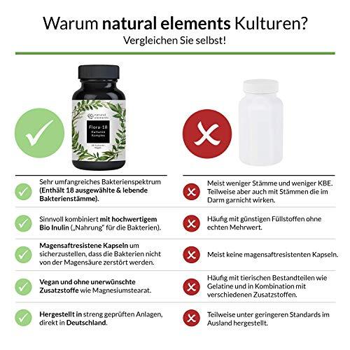 Kulturen Komplex aus 18 Bakterienstämmen mit Bio Inulin – Einführungspreis – 180 magensaftresistente Kapseln – Hochdosiert, vegan und hergestellt in Deutschland