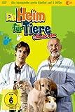 Ein Heim für Tiere - Collector's Box Vol. 01 (Folge 01-20) (5 DVDs) -