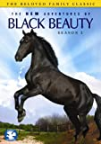 New Adventures of Black Beauty: Season 2 [DVD] [1991] [Region 1] [US Import] [NTSC]
