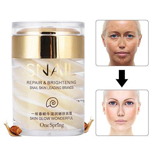 Schneckencreme, Schnecke Feuchtigkeitscreme, Secretion nährende Haut Creme Gesicht Anti-Aging Beauty Cosmetic -