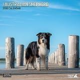Magnet & Stahl 'Australian Shepherd Traditioneller' 2018Kalender