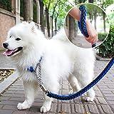 JINSANSHUN Neumodisch (blau+schwarz,XL) Strapazierfähigem Nylon Hunde-Leine Haustier Hundeleinen Geflochtene Stitching Verstellbare Führleine mit Hundehalsband / Halsbänder für Mittel,große Hunde