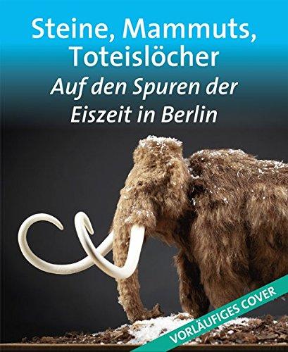 Steine, Mammuts, Toteislöcher: Auf den Spuren der Eiszeit in Berlin (Edition Stadtmuseum / KLEINE REIHE)