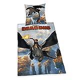 Herding 442656050412 Bettwäsche Dragons, Kopfkissenbezug 80 x 80 cm und Bettbezug 135 x 200 cm, 100% Baumwolle, Renforce