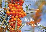 Reife Früchte (Tischkalender 2019 DIN A5 quer): Lassen Sie sich mit Obst, frisch von Baum und Strauch, durch das Jahr begleiten. (Monatskalender, 14 Seiten ) (CALVENDO Natur)