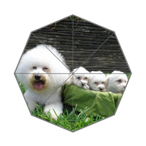 Flipped Summer Y gespiegelt Sommer Y Bichon Frisé Hunde Rasse Individuelle Art Prints Regenschirm -